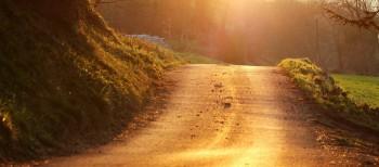 Arte / camino