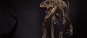 Dinosaurs and modern art' market